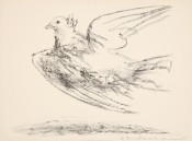 Le vol de la colombe