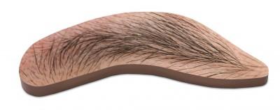 Eyebrow von John Baldessari