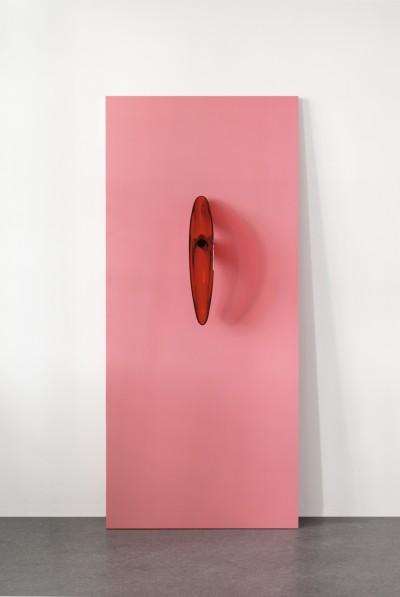 Anish Kapoor, Reverse Perverse, 2006