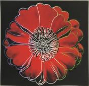 Flower for Tacoma Dome