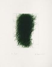 Der Grüne Wachter (The Green Guard)