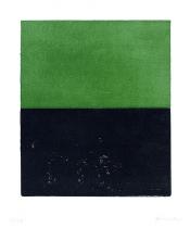 Ohne Titel Schwarz/Grün