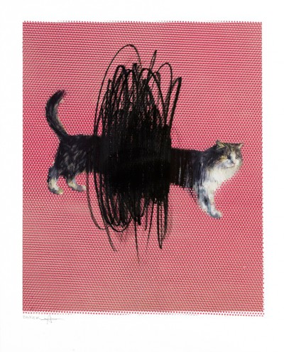Charming Baker, One or Two Cats, 2016