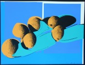Space Fruits (Cantaloupes I)