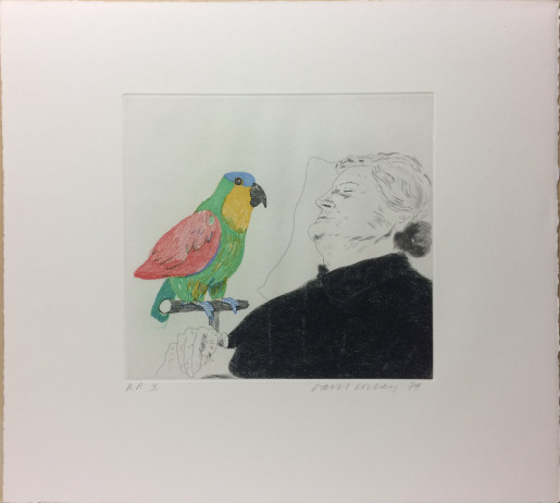 David Hockney, Félicité Sleeping with Parrot, 1974