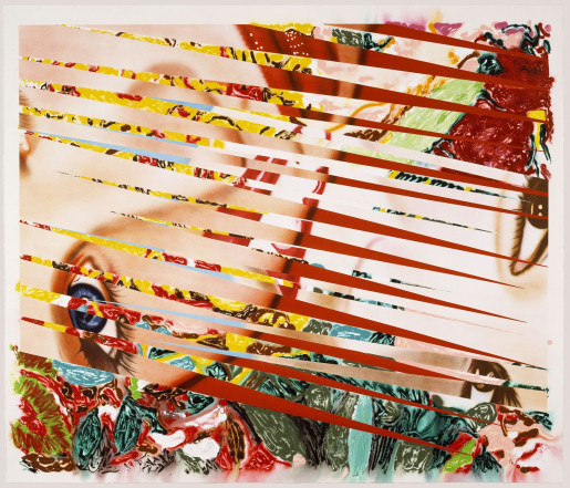 James Rosenquist, Flowers and Females, 1986
