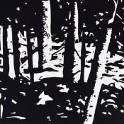Maine Woods II