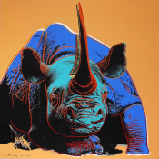 "Black Rhinoceros (FS II.301) from the Portfolio ""Endangered Species"""