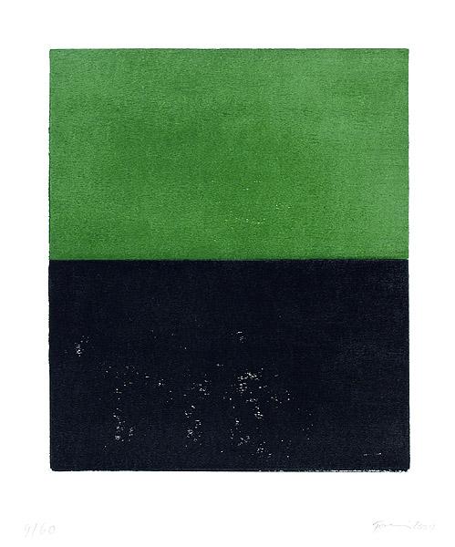 Günther Förg, Ohne Titel Schwarz/Grün, 2000