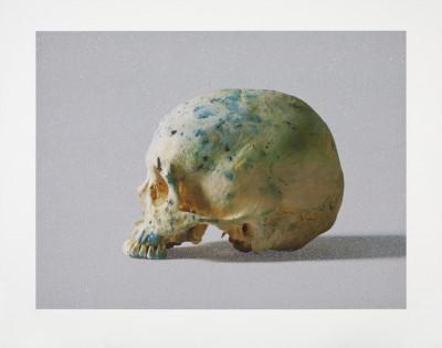 Damien Hirst, Studio Half Skull, half face, 2009