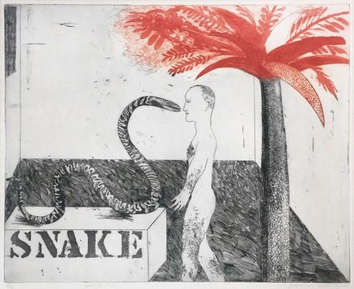 David Hockney, Jungle Boy, 1964
