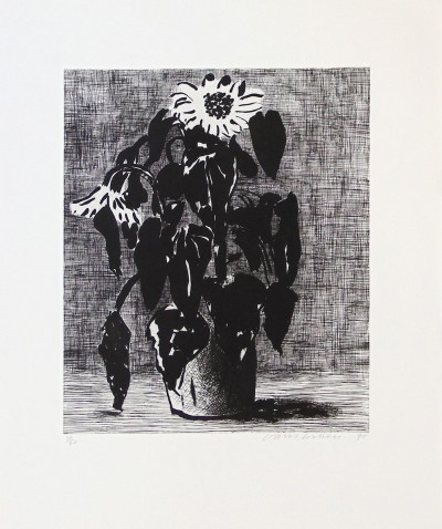 Sunflower II von David Hockney