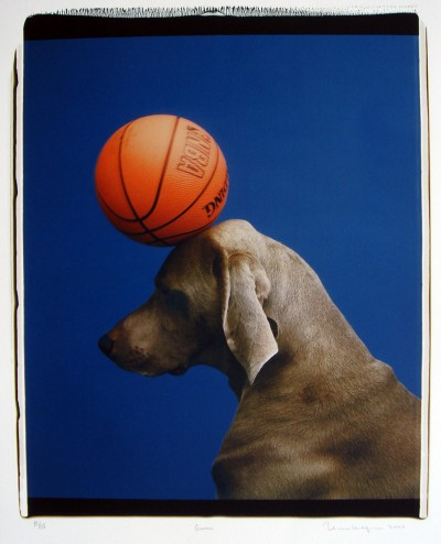 Game von William Wegman