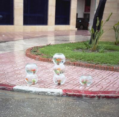 Yto Barrada, Aquariums for Sale on a Rainy Day; Tangier, 2001