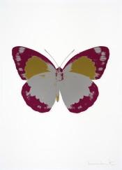 The Souls II - Silver Gloss/Fuchsia Pink/Oriental Gold